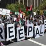 مسئلہ فلسطین کی حمایت اہم فریضہ