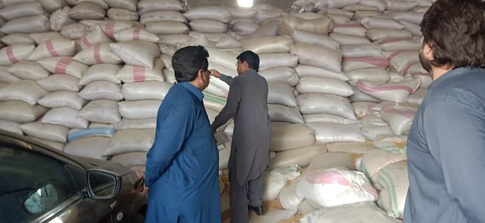 پاکستان میں گندم کی پیداوار پر حکومت اور عالمی اداروں کے درمیان 13 لاکھ ٹن کا فرق
