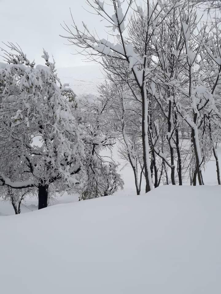 لوئیر دیر کے سیاحتی مقام شاہی میں موسم سرما کی پہلی برف باری