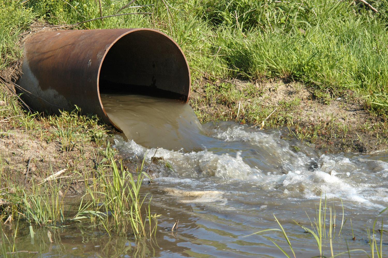 زمینی مٹی سالانہ 4 کروڑ ٹن انسانی فضلہ فلٹر کرتی ہے